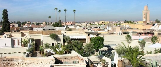 Riad Camilia: View of rooftop