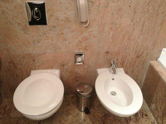 Radisson Blu Hotel, Doha: WC