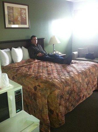 Econo Lodge Huntsville: king bed