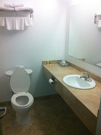 Econolodge Huntsville : bathroom
