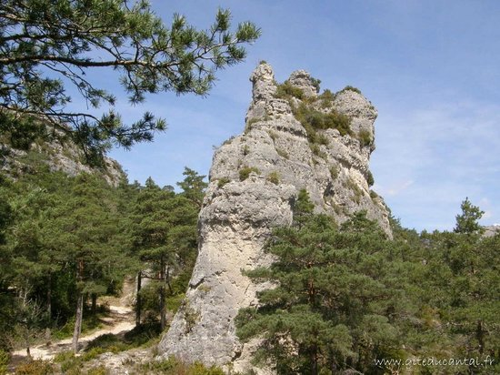 Montpellier-le-Vieux : Des roches issues du retrait de la mer