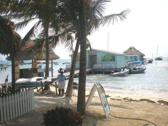 Blue Tang Inn: view from inn