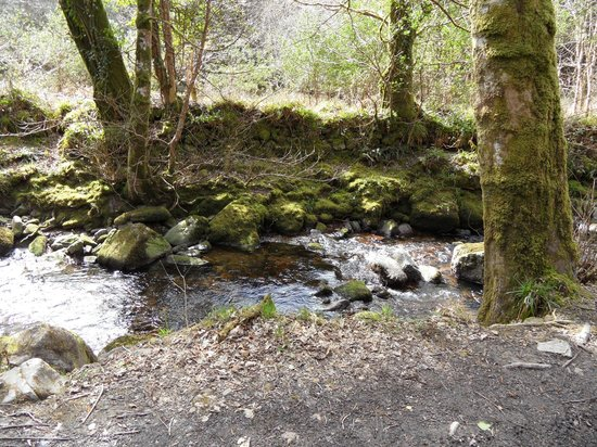 Carey's Castle : By the Glenary Stream/River along the long route to the castle