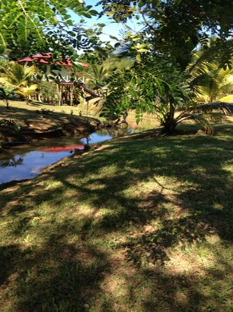 Orange Bay, Jamaica: River scene