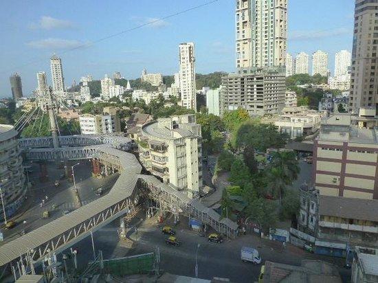 Krishna Palace Hotel : view