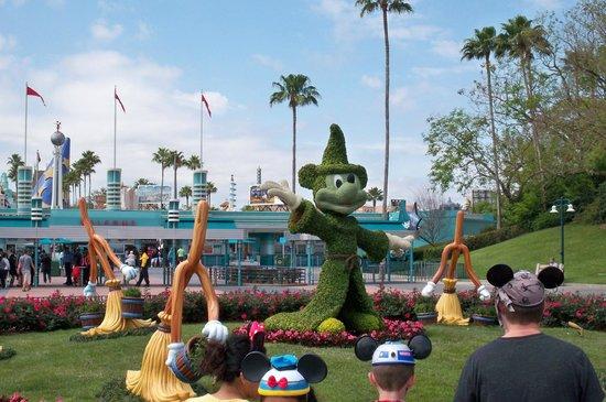 Disney's Hollywood Studios: entrada parque