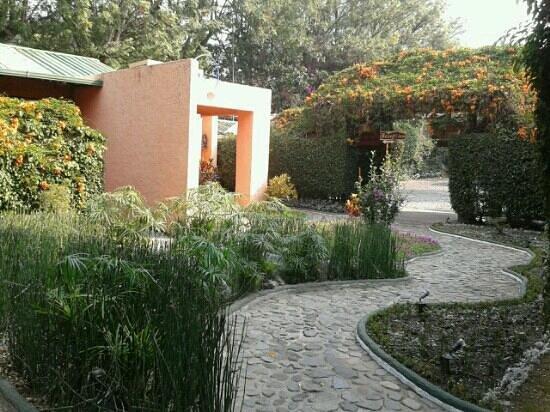 Hotel Posada de Don Rodrigo Panajachel: Otro hermoso jardín