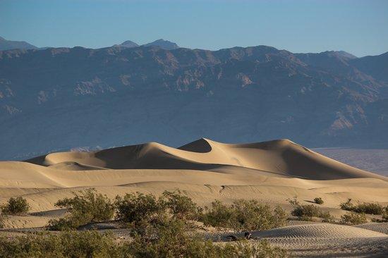 Mesquite Flat Sand Dunes: Amazing!