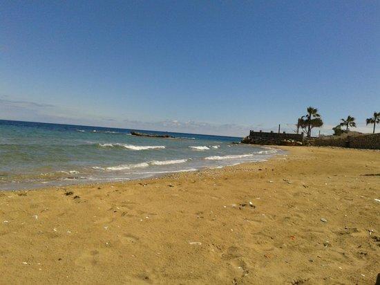 LA Hotel & Resort: strand