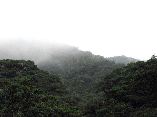 Casa Balbi: Cloud Forest