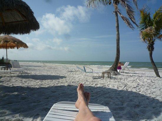 Tiki On The Beach: Where's my Corona??