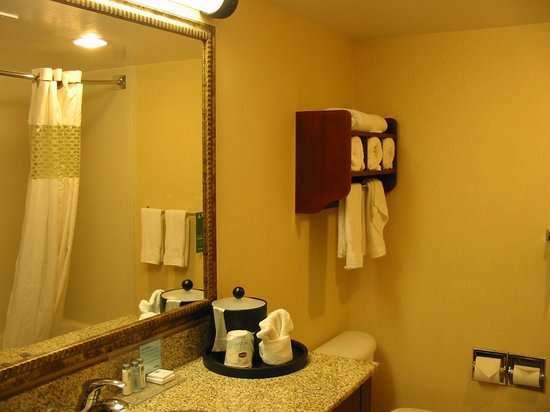 Hampton Inn Alexandria/Pentagon South: Bathroom