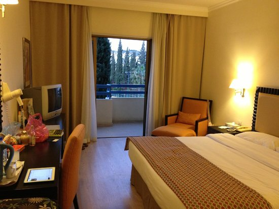 Elias Beach Hotel: My room - with inland view