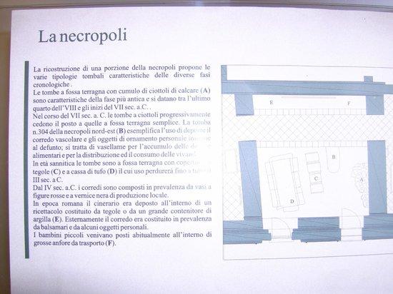 Museo Archeologico di Calatia : La necropoli