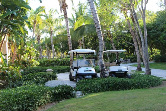 Tortuga Bay, Puntacana Resort & Club: transportation