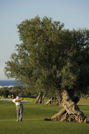 Masseria Torre Maizza : Golf