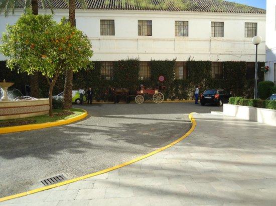 Hotel Zenit Sevilla : entrada hotel