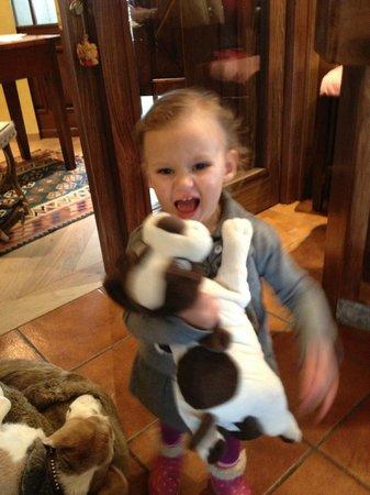 Hotel Fosson: Loving Nikki the toy dog