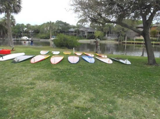 Paddleboard Melbourne : Smooth, comfortable and stable paddledboards, with super cool colors!