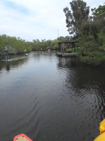 Paddleboard Melbourne : Paddling one of the canals. Saw several manatee today. :-)))