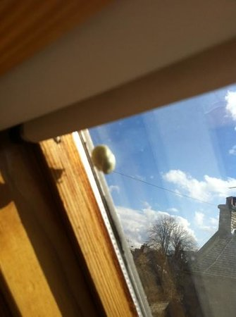Woodcroft  Cottages: chewing gum on roof light!