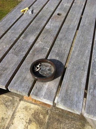 Woodcroft  Cottages: ashtray in garden!