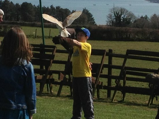 Perriswood Archery & Falconry Centre
