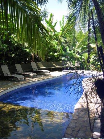 Villas Oasis: Small but wonderful pool