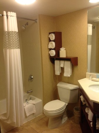 Hampton Inn Des Moines-West: Bathroom