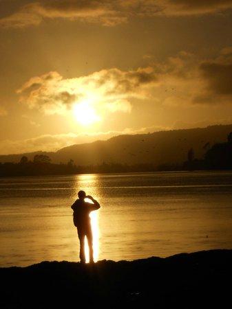 Sudima Hotel Lake Rotorua: Lake Rotorua in the morning