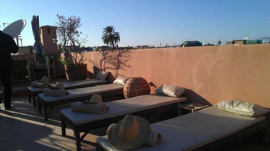 Dar Andamaure: Terrace