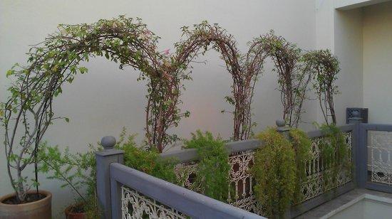 Dar Andamaure: On the Terrace