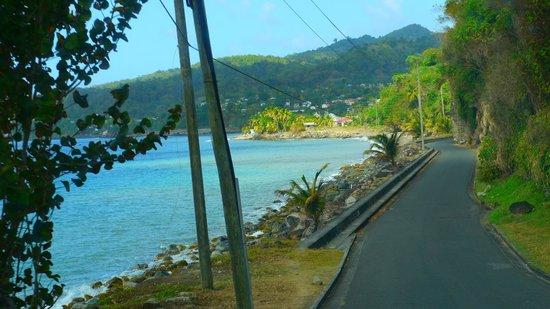 Treetops Villa Guest House: The long winding roads of Grenada