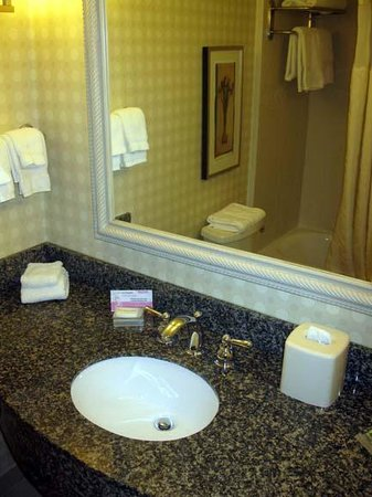 Hilton Garden Inn Bangor: Bathroom