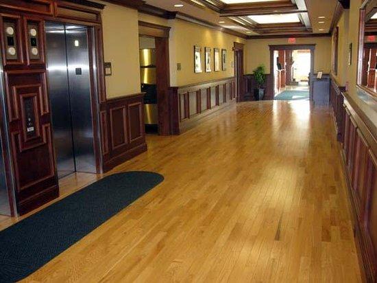 Hilton Garden Inn Bangor: Public Area/Elevators