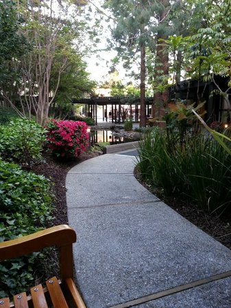 Sheraton Palo Alto Hotel: Courtyard walking path and ponds