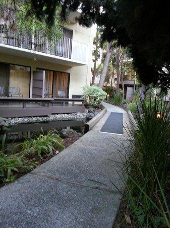 Sheraton Palo Alto Hotel: Courtyard walking path and ponds