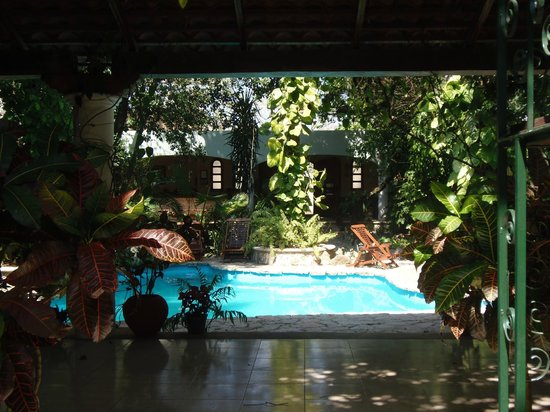 Casa Quetzal: The view as your arrive into the hotel!