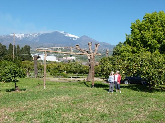 Agriturismo Codavolpe: Codavolpe looking towards Etna