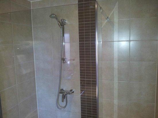 Brigstock House: shower