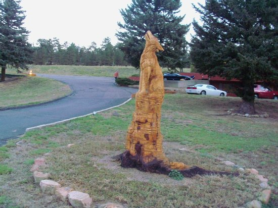 Discovery Lodge: chainsaw carving on tree stump