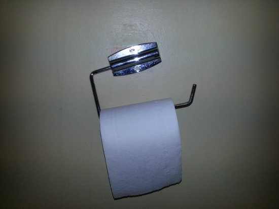 Oranmore Lodge Hotel: Toliet Roll Holder