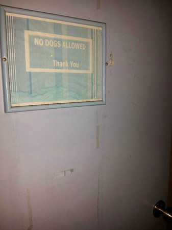 "Friendship Hotel: ""No Dogs"" Sign. Yet, if you pay them extra, you can have them. Lots of barking too..!!!"