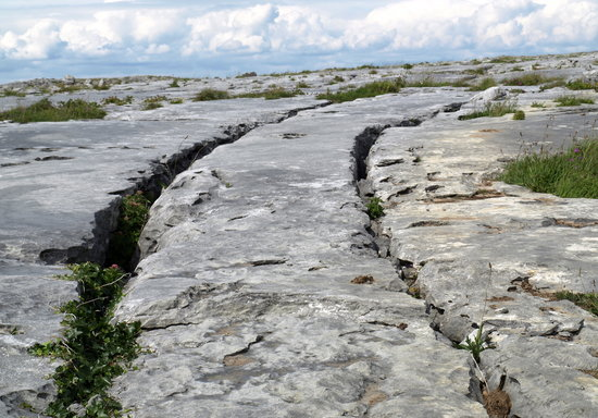 Emohruo Bed and Breakfast: Stoney Tracks