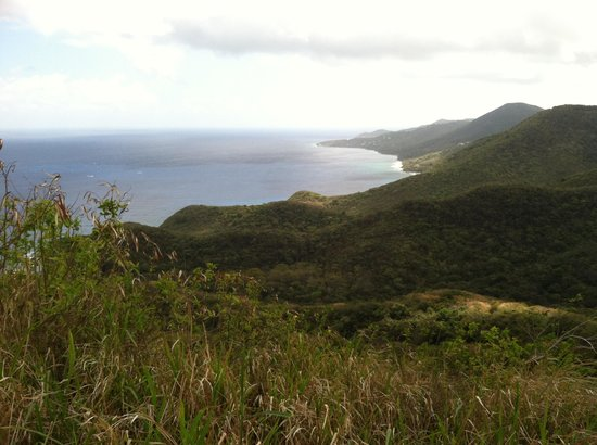 Gecko's Island Adventures: A view from the ATV tour