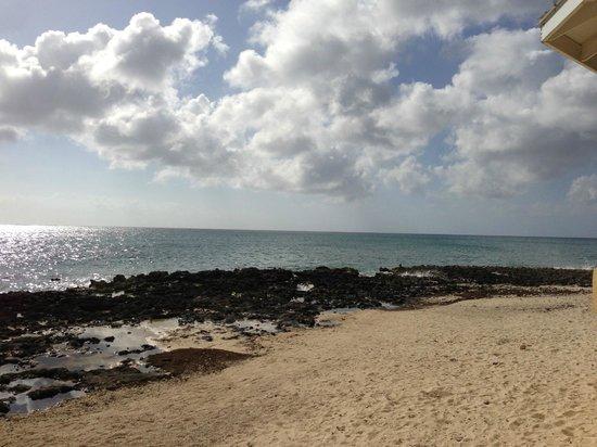 Poinsettia : Gazebo looks out on the ocean and beach