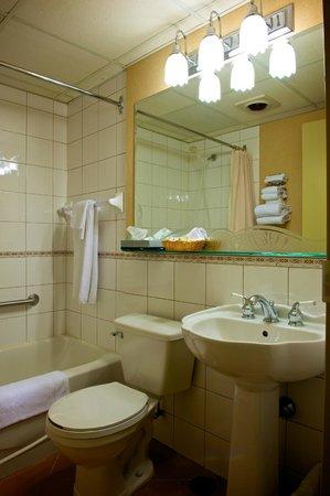 Hotel Castel & Spa Confort: Salle de bain chambre Hospitalité à un lit Queen