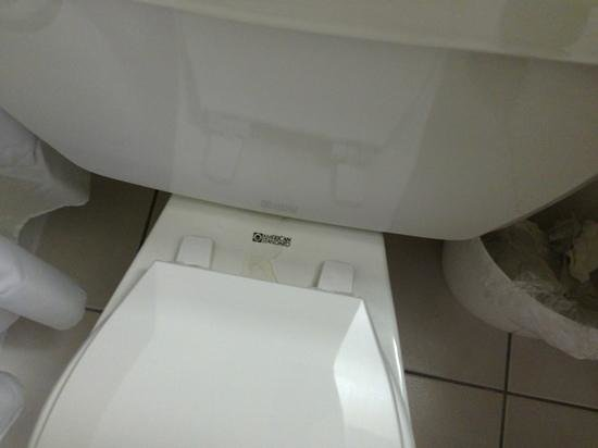 DreamView Beachfront Hotel & Resort: dirty toilet