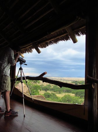Serengeti Pioneer Camp: view from lodge