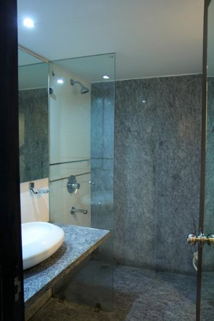 Hotel Le Roi: Modern bathroom, everything was in working order.